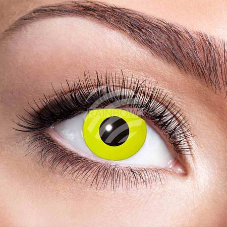 KL-w05 Weiche getönte Kontaktlinse Yellow Crow Eye gelb